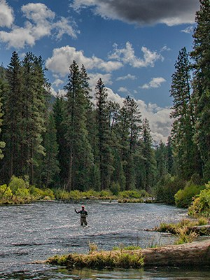 Fishing is a favorite pastime on the Metolius River. Photo: Jay Mather.