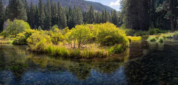 An island in the Metolius River at the Land Trust's Metolius River Preserve. Photo: Jay Mather.