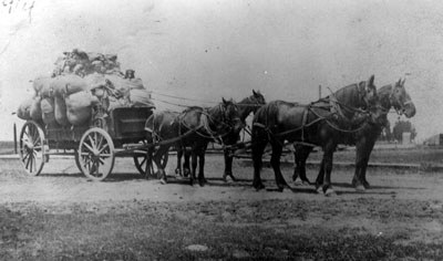 Hauling wool circa 1910. Photo: Bowman Museum.