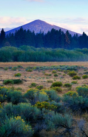 Black Butte at Indian Ford Meadow Preserve. Photo: Greg Burke.