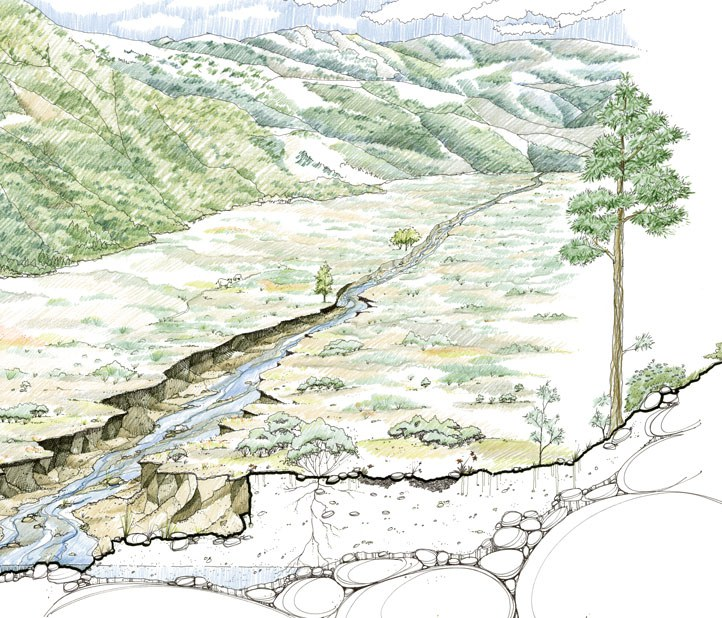 An unhealthy meadow where groundwater has dropped so low, no plants can grow. Drawing: Restoration Design Group.
