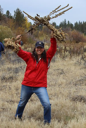 Waging war on the weeds at Willow Springs Preserve. Photo: Land Trust.
