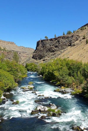The Deschutes River downstream from its confluence with Whychus Creek. Photo: Joan Amero