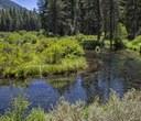 Metolius River Preserve Virtual Tour