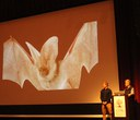 Nature Night Recap: The Beauty of Bats with Tom Rodhouse and Michael Durham