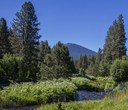 Cool Words for Hot Times: Ecosystem Services