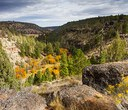 The Story of Whychus Canyon Preserve