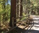 Aspen Hollow Preserve Restoration