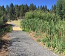 Camp Polk Meadow Preserve: new trail complete!