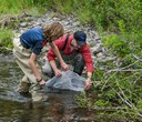Internationally-renowned river scientist to study stream restoration projects on Whychus Creek