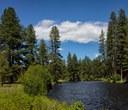 Land Trust announces new Metolius River Preserve
