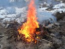 Pile burning planned for Camp Polk Meadow Preserve