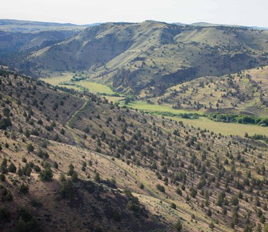 Land Trust introduces Priday Ranch