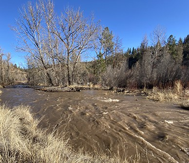 High Flows at Whychus Canyon Preserve
