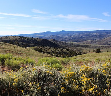Deschutes Land Trust conserves large portion of Post-area cattle ranch