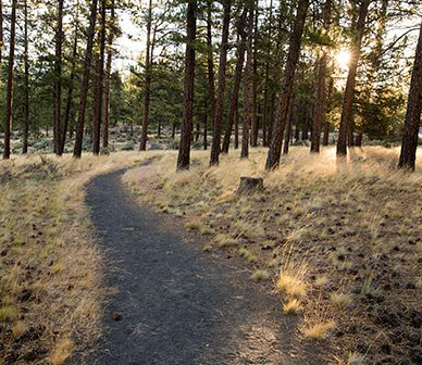 Public Health Closure of Land Trust Preserves and Trails